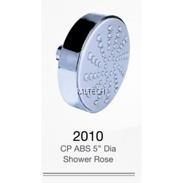 """2010 CP ABS 5"""" Dia Shower Rose"""